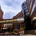 Hospital Albert Einstein Atende o Plano de Saúde NotreDame para Inscritos na OAB-SP?